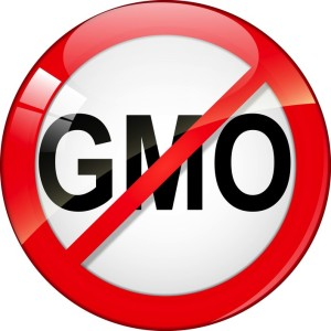 Trans fat, high fructose corn syrup, soy, soy products genetically modified organism